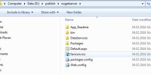 Local NuGet Server